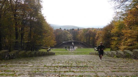 20141108 - 124 - 20 ans Ilvesheim - Visite site Heiligenberg