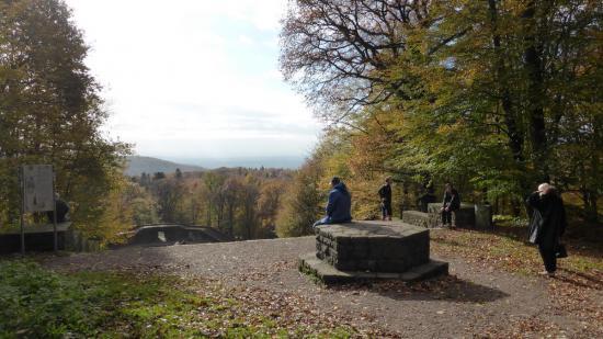 20141108 - 126 - 20 ans Ilvesheim - Visite site Heiligenberg