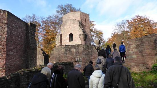 20141108 - 128 - 20 ans Ilvesheim - Visite site Heiligenberg