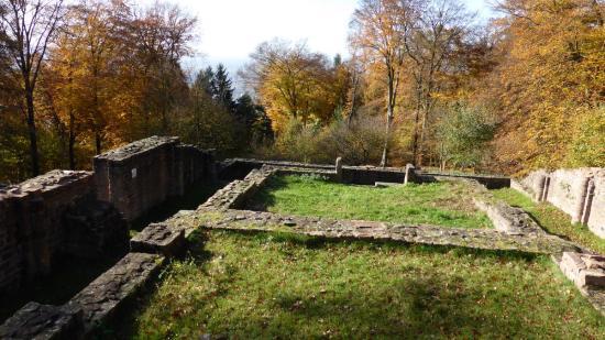 20141108 - 133 - 20 ans Ilvesheim - Visite site Heiligenberg