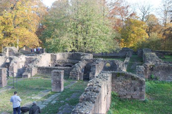 20141108 - 141 - 20 ans Ilvesheim - Visite site Heiligenberg