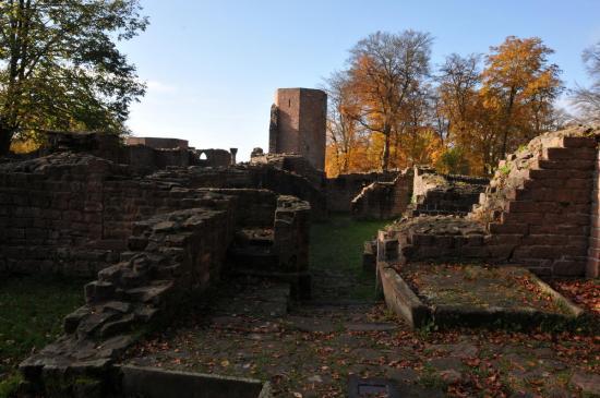 20141108 - 150 - 20 ans Ilvesheim - Visite site Heiligenberg