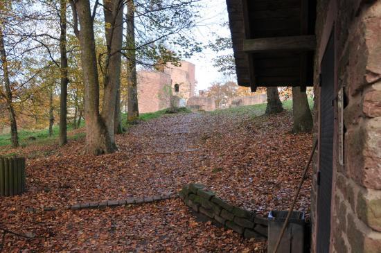 20141108 - 154 - 20 ans Ilvesheim - Visite site Heiligenberg