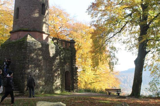 20141108 - 174 - 20 ans Ilvesheim - Visite site Heiligenberg