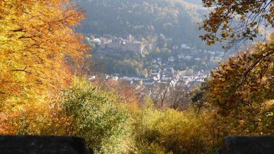 20141108 - 181 - 20 ans Ilvesheim - Visite site Heiligenberg