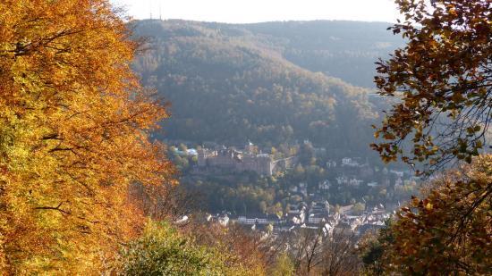 20141108 - 183 - 20 ans Ilvesheim - Visite site Heiligenberg